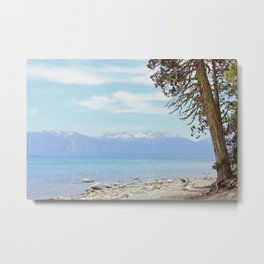Tree by the lake Metal Print