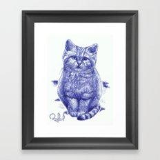 Staring cat Framed Art Print