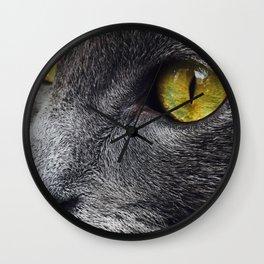 Russian Blue Cat Eyes Wall Clock