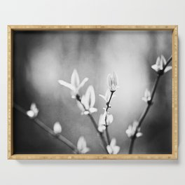 Black and White Nature Photography, Dark Grey Tree Branches, Gray Neutral Botanical Branch Leaves Serving Tray