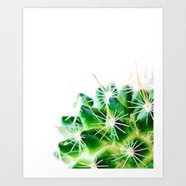 Half a Cactus 01 Art Print