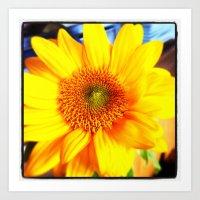 Bright, Yellow, Flower from the Northwest Art Print