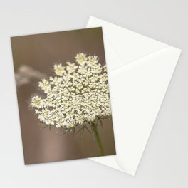 Pretty Things On A Hike Stationery Cards