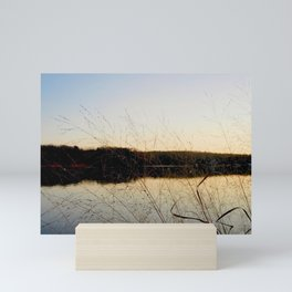 Reeds by the River | Severn River, MD Mini Art Print