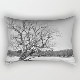 By The Frozen Pond Rectangular Pillow
