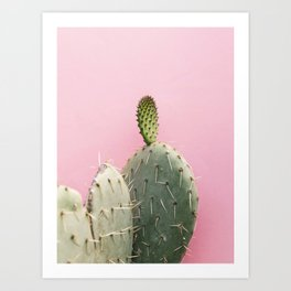 Cacti and pink II Art Print
