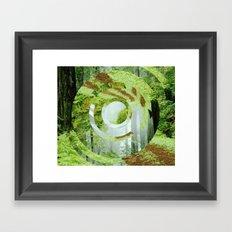Forest Trips. Framed Art Print