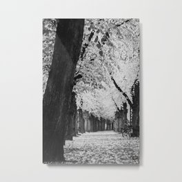 Copenhagen Fall Metal Print