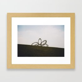 Tiger & Turtle Framed Art Print