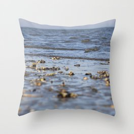 Shells in the sand 4 Throw Pillow