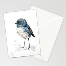Toutouwai, New Zealand Robin bird Stationery Cards