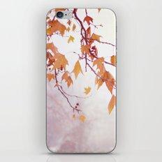 Gracefully  iPhone & iPod Skin