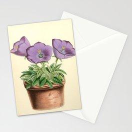 Andrews, James (1801-1876) - The Floral Magazine 1869 - Campanula Turbinata Stationery Cards