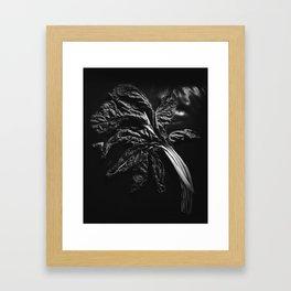 Chesterfield / Chard in Monochrome Framed Art Print
