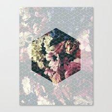 Spring Geometry Canvas Print