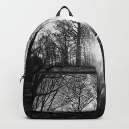 Nature through a FishEye Backpack