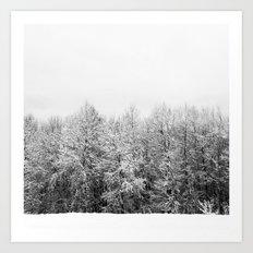 Ansels Trees Art Print