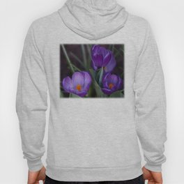 Purple crocuses Hoody