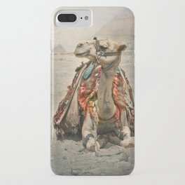 Camel at Giza iPhone Case