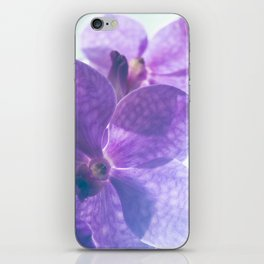 Orchid Vanda 82 iPhone Skin