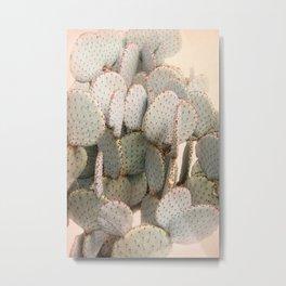 Cactus Blush 2 Metal Print
