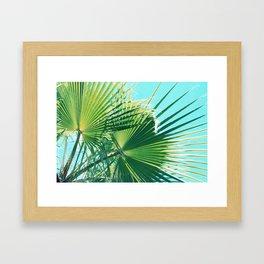 Botanical Garden of Dreams Framed Art Print