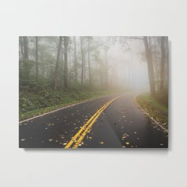 Smoky Mountain Summer Forest VI - National Park Nature Photography Metal Print
