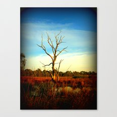 Cockatoo Tree Canvas Print