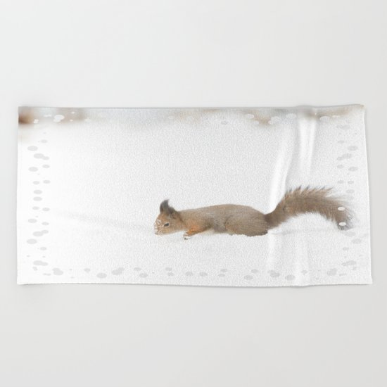 Little squirrel sitting in the snow Beach Towel