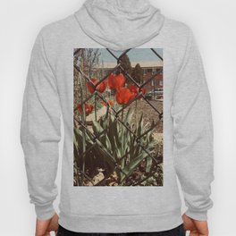 The Red Tulips Hoody