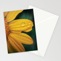 Yellow Water Stationery Cards