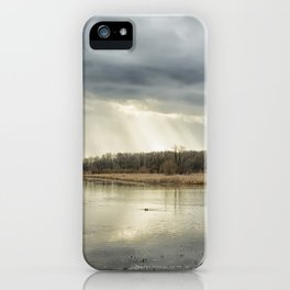 Birdland iPhone Case