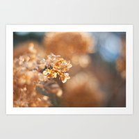 gold glitter Art Prints featuring Gold Glitter by Katie Kirkland Photography