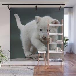 White lion cub Wall Mural