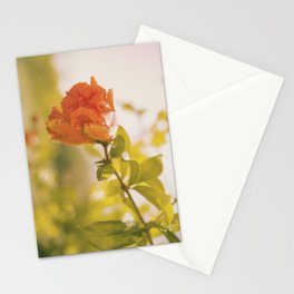 Nature Persists Stationery Cards
