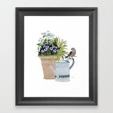 Pansies in a pot Framed Art Print