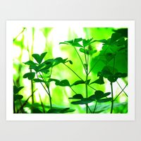 clover Art Prints featuring Clover by Bella Mahri-PhotoArt By Tina