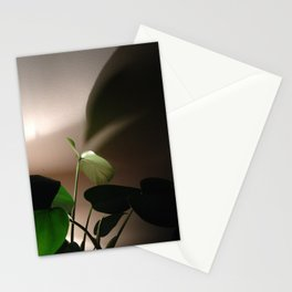#Photo182 #202 Evening #LightStudy of my #Plants Stationery Cards