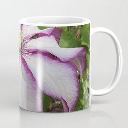 Clematis - Stunning two-tone flowers Coffee Mug