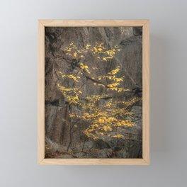 Yellow Autumn Tree against Gray Rock Cliff Framed Mini Art Print