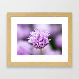 Chive Framed Art Print
