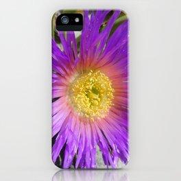 Purple Ice Plant Bloom iPhone Case
