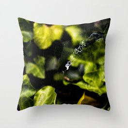 The Web And The Snail Throw Pillow