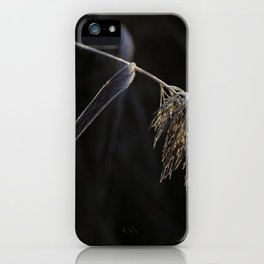 Fall has arrived #decor #society6 #buyart iPhone Case