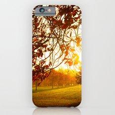 Autumn Sun Slim Case iPhone 6s