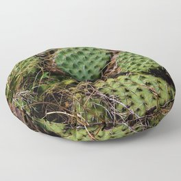 Cactus Floor Pillow