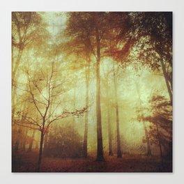 Fall Meditations Canvas Print