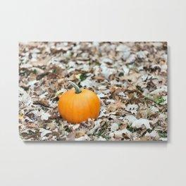 Little Pumpkin 1 Metal Print