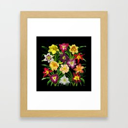 Display of daylilies I Framed Art Print
