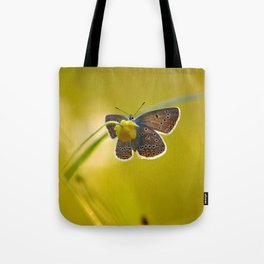 Lovely evening Tote Bag